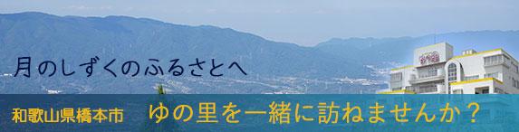 高野山を訪ねるツアー